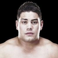 mma, shane del rosario, critical condition, heavyweight