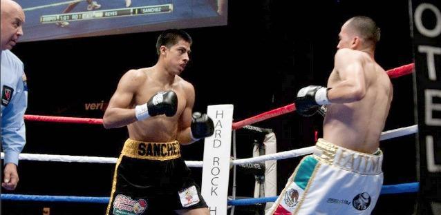 sanchez boxing