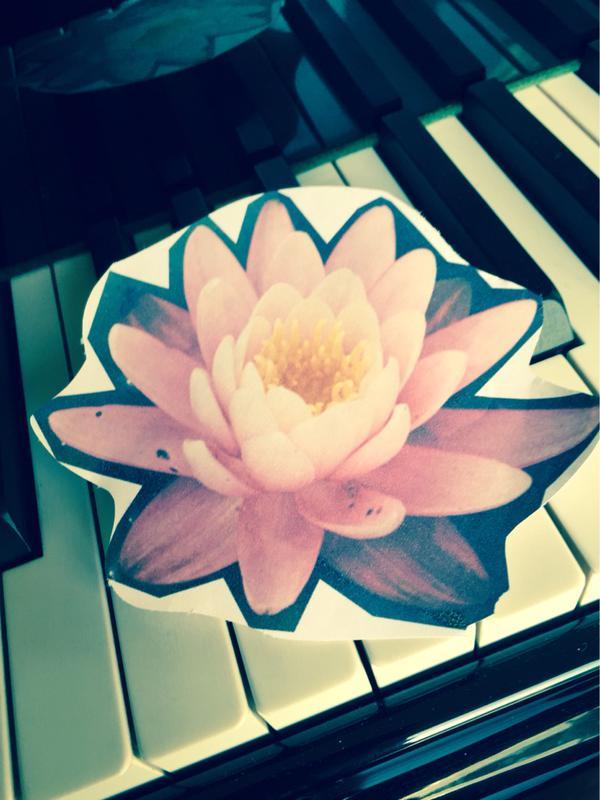 zayn flower